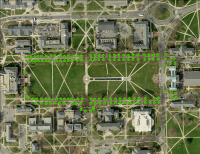 McKeldin Mall Oaks Map
